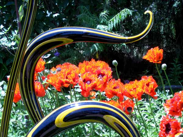 Chihuly at DBG 2014 - Perennial Fiori (3)