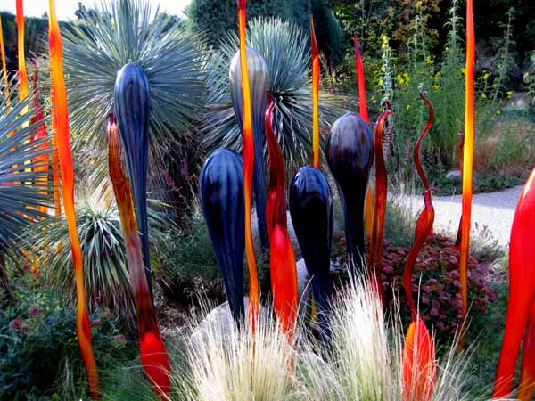 Chihuly at DBG 2014 - Summer Sun (4)