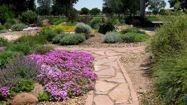 13-06-18 Adams Cactus Garden (21)