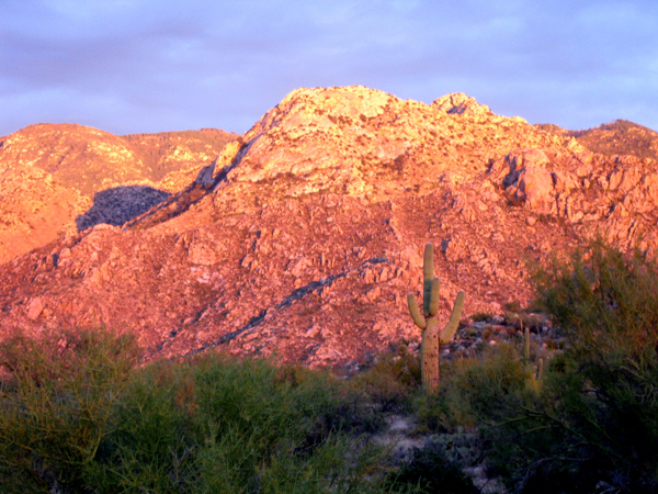 14-12-06 Catalina State Park -010