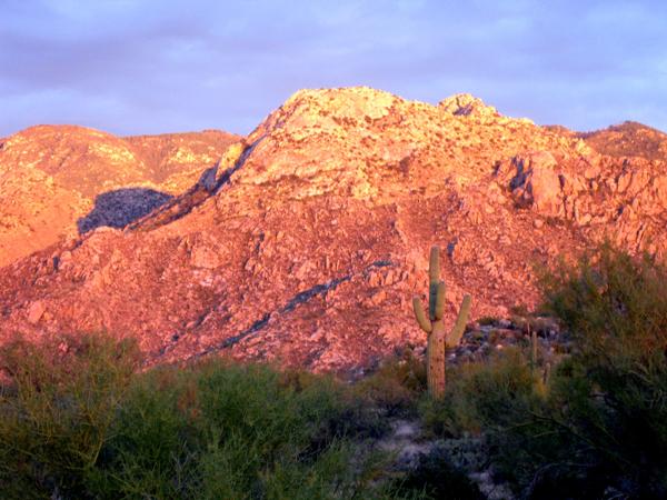 14-12-06 Catalina State Park -010