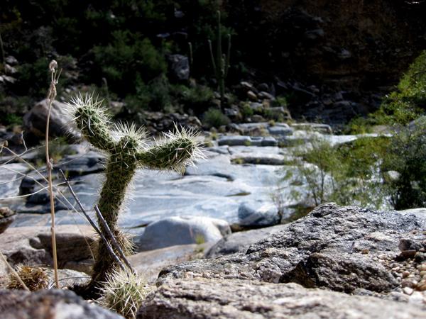 14-12-15 Sabinal Canyon Seven Falls Trail -012