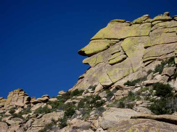 14-12-22 Mt Lemmon -012