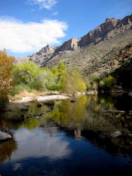 14-12-25 Sabino Canyon -001