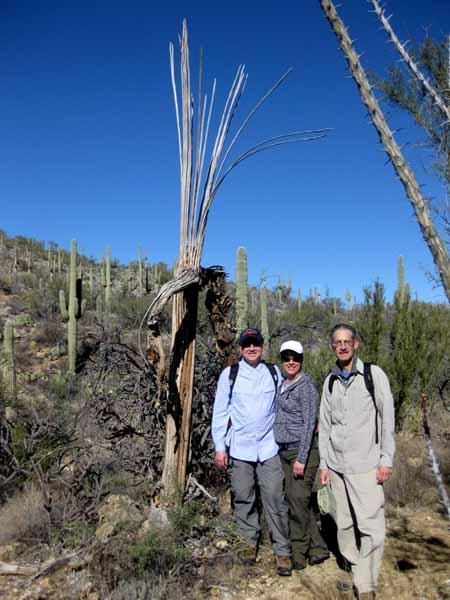 14-12-26 Saguaro NP-East, Douglas Spring M&M -003