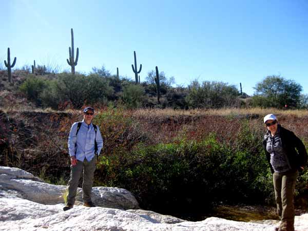 14-12-26 Saguaro NP-East, Douglas Spring M&M -014