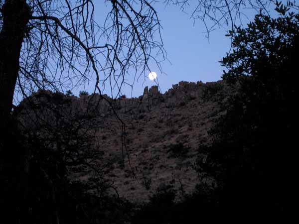 15-01-07 Chiricahua NM -002