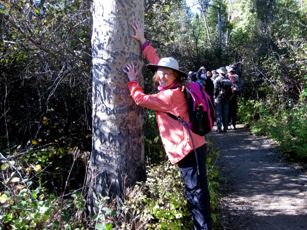 15-09 Grand Teton NP -031 - Pam L Rockefeller Preserve Ranger Stand