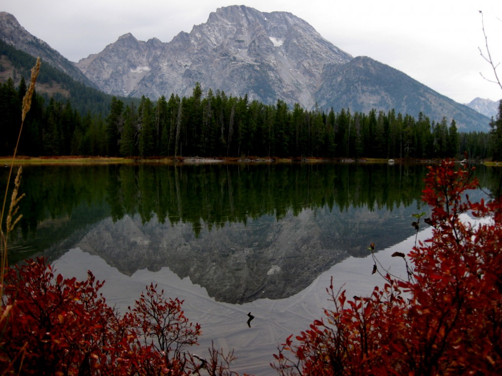 15-09 Grand Teton NP -122 - Leigh Lake