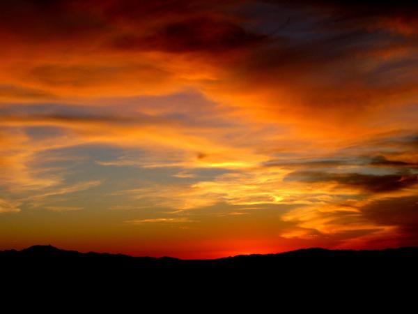 15-12-21 Saguaro NP (West) Wasson Peak Ranger Led Moonlight Hike -015