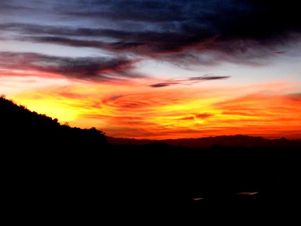 15-12-21 Saguaro NP (West) Wasson Peak Ranger Led Moonlight Hike -019
