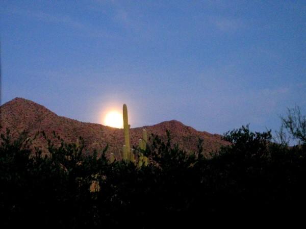 15-12-24 Saguaro NP (West) Moonrise Holiday Program -004