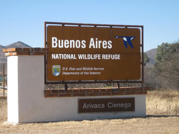 15-12-27 Buenos Aires NWR Mustang Trail to El Cerro -001