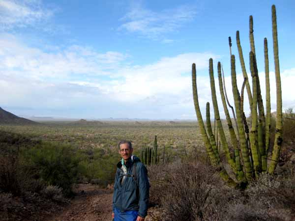 16-01-07 Organ Pipe Cactus NM -006 Henry