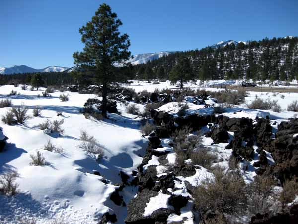 16-01-13 Sunset Crater Volcano NM -007